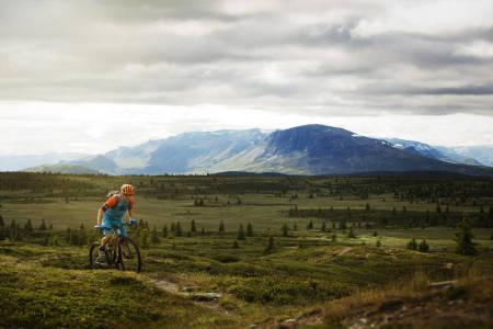 sykkel enduro stisykkel terrengsykkel