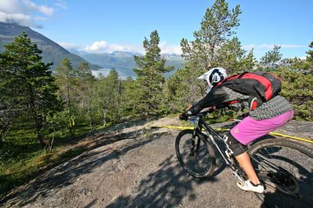 STOR DELTAGELSE: 70 syklister i aksjon under Tromsø Enduro, tjue av dem jenter, viser at det gror godt i stisykkelmiljøet i Tromsø. Foto: Jan Arild Hansen