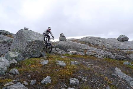 SVAVIK: Terrenget er variert i nordlandsbyen, og noen steder kan man sykle på svaberg.
