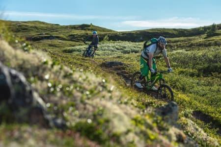 PÅ TUR: En av sykkelturene til sommeren er i Hallingdal. Foto: Vegard Breie