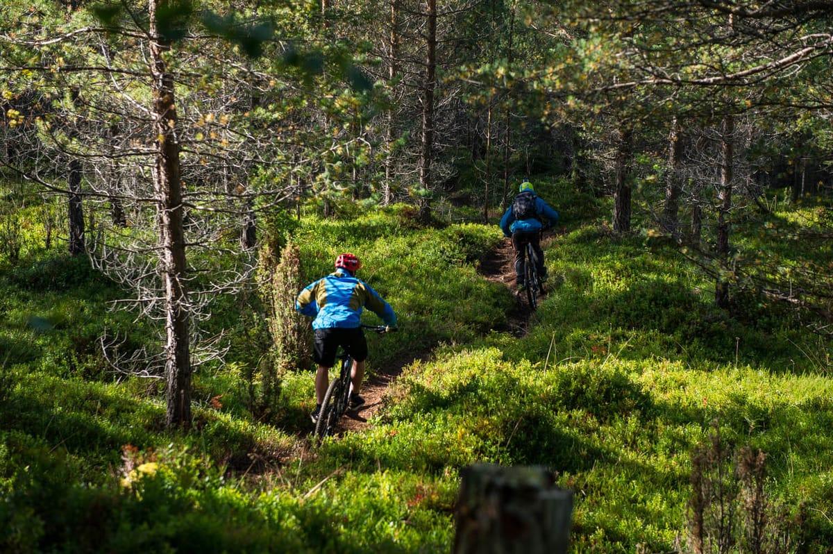 Stisykling står sentralt i programmet. Foto: Olav Standal Tangen