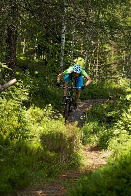FORBUDT? Fylkesmannan ønsker forbud mot stisykling flere steder i Oslomarka.