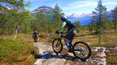 SOMMER OG VINTER: Både ski- og sykkeltur av ypperste merke under Folven toppturfestival sist helg. Foto: Tommy Aslaksen