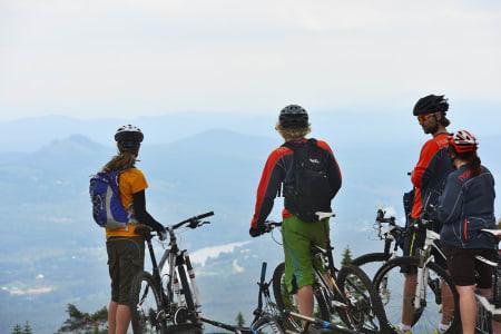 STIFEST: Årets store hyggefestival for terrengsyklister ble en stor suksess, både for syklister og mygg. Bilde: Endre Løvaas