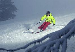 PISTÅKARE: Patrick på ski for medelgoda piståkare. Foto: DanielRonnback.com