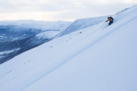 POPULÆRT: I vinter var det fire ganger så mange innmeldte skredobservasjoner fra frivillige sammenliknet med i fjor. Arkivfoto: Tore Meirik