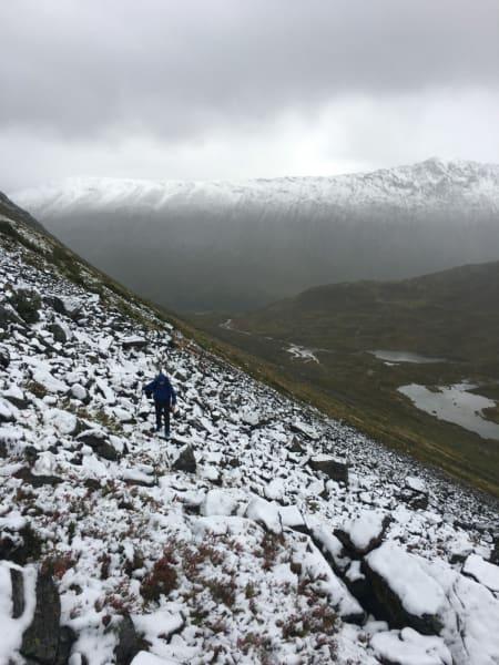 På rundt 800 moh, der de møtte på snøen. Foto: Andreas Strand Helland