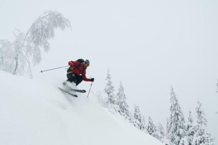 HØGRUTA I OSLO: Jakten på fin skikjøring lyktes til slutt. Erlend Sande finner fin skikjøring på Norges mest miljøvennlige høgrute. Foto: Gunhild Aaslie Soldal