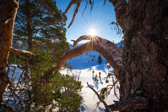 Legg skituren til Rotsethornet - fjellet du når fra sentrum i Volda