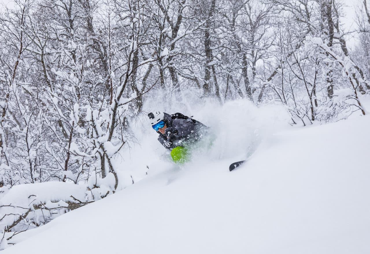 BONUSPUDDER: Primus motor Asbjørn Eggebø Næss fikk seg en solid dose pudder under skia på pudderdagen i Brandstadskogen. Bilde: Terje Aamodt