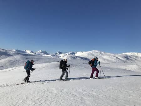 Man ser inn i Morka-Koldedalen og vestover mot Hurrungane store deler av oppstigninga. Foto: Torje Helland Graff