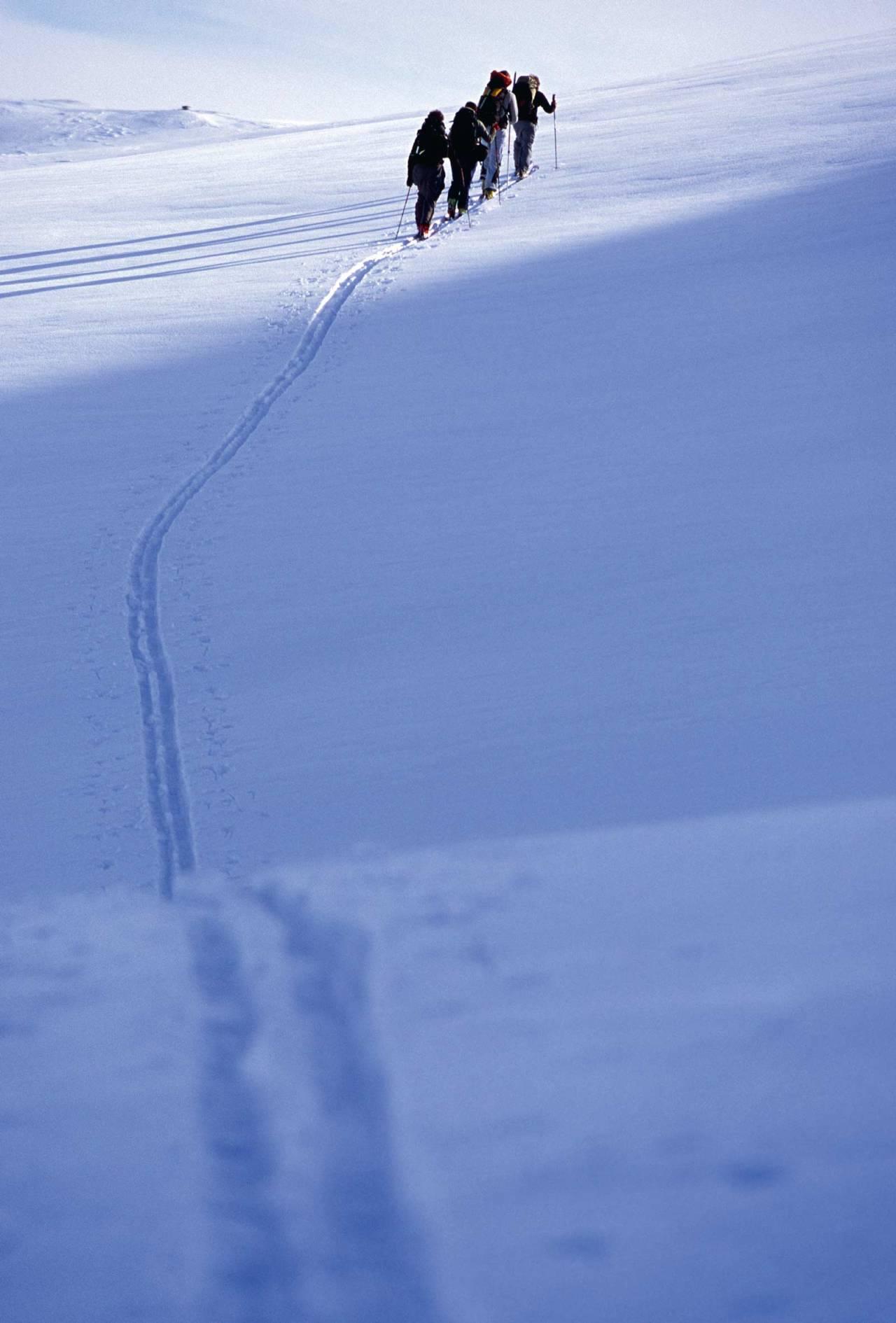 Trikkeskinner. Foto: Lars Thulin / Toppturer rundt Narvik.