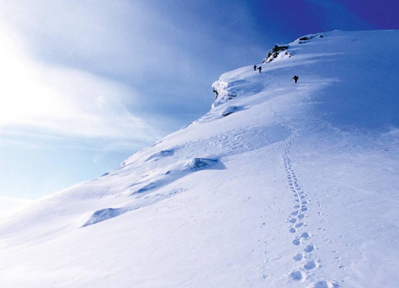 På tur opp langs østryggen på Niingen. Foto: Lars Thulin / Toppturer rundt Narvik.