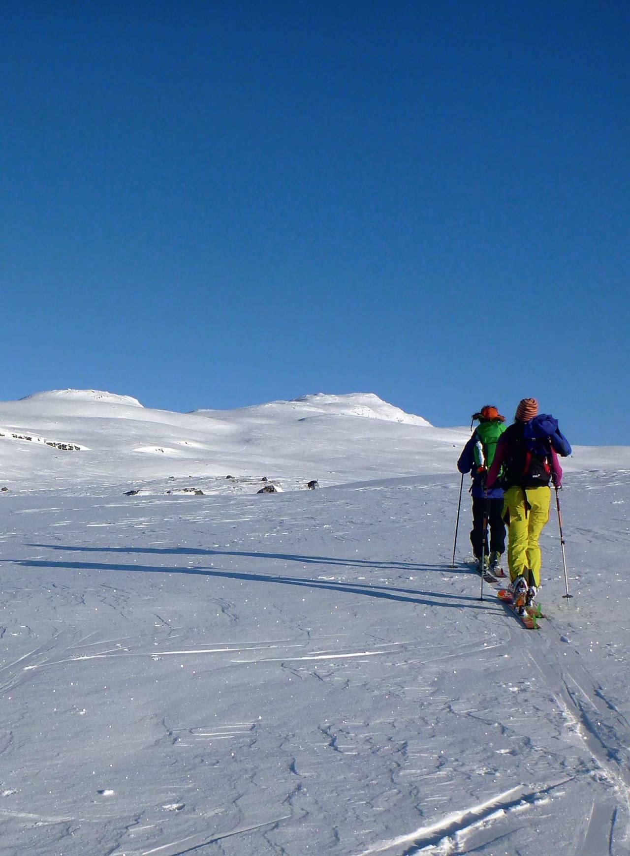 I horisonten ser du toppen Vesle Nup. Foto: Frank Pedersen