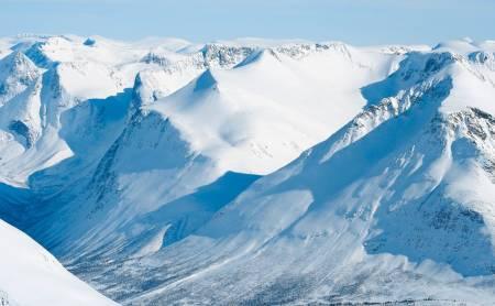 Hesten 1610 moh fra Toppturer i Romsdalen