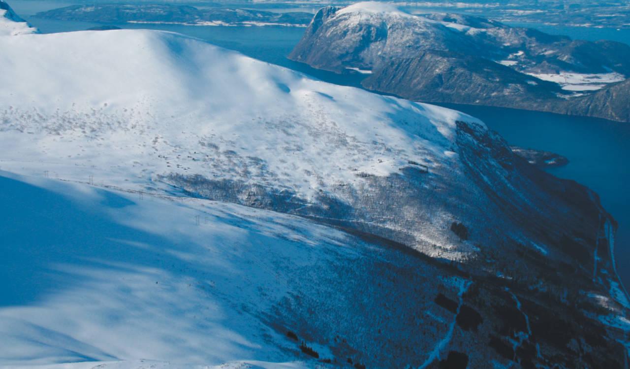 Skarven sett fra sør. Skogsveier fra fjorden følges oppgjennom det meste av skogen.