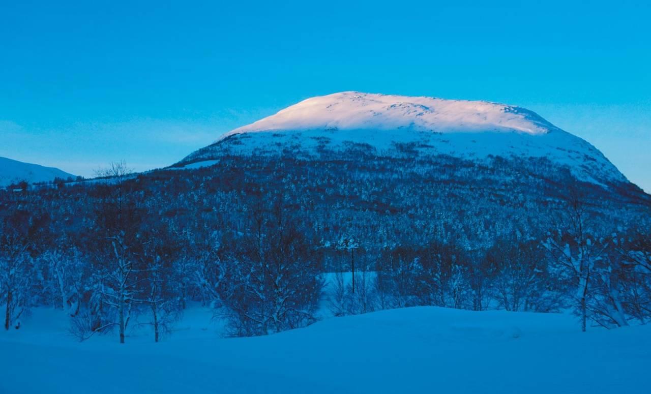 Rånåkollen 1160 moh fra Toppturer i Romsdalen