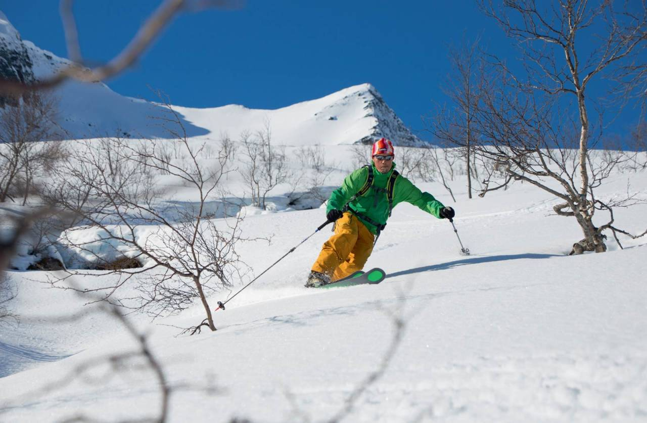 Per Ivar Lied i fint driv. Toppflanken bak skikøyraren. Foto: Håvard Myklebust.