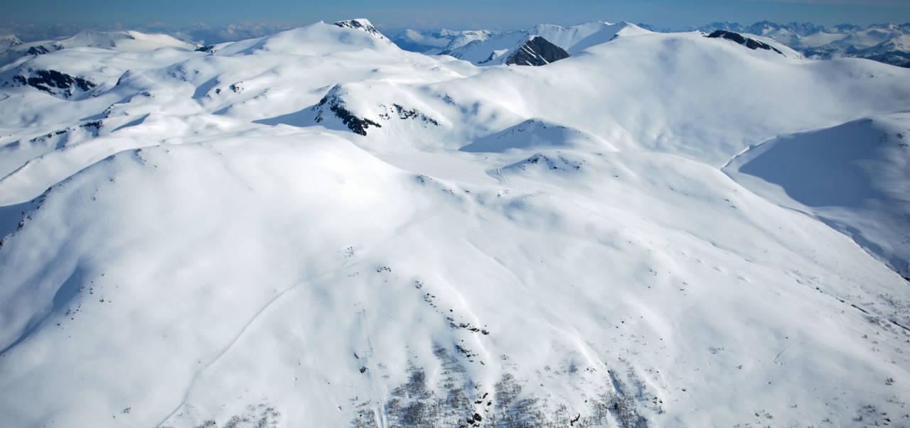 Den lange og slakke ruta opp frå Harpefossen skisenter til toppen. Foto: Håvard Myklebust.