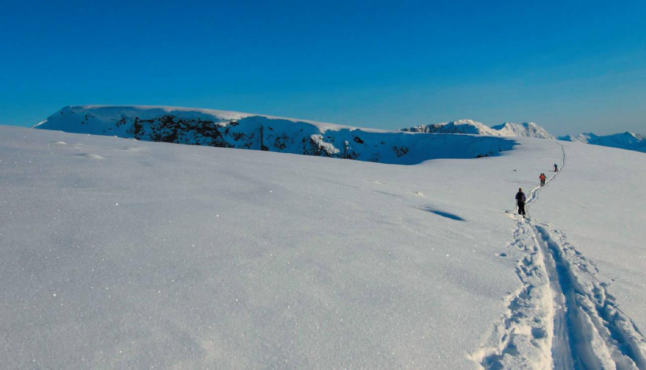 Joel Frans, Madeleine Lagergren, Ingrid Kårstad og Mona Mader går langs de enorme skavlene på østsida inn mot Lavangstinden. Foto: Kjetil M. Samuelsen. / Toppturer i Troms.
