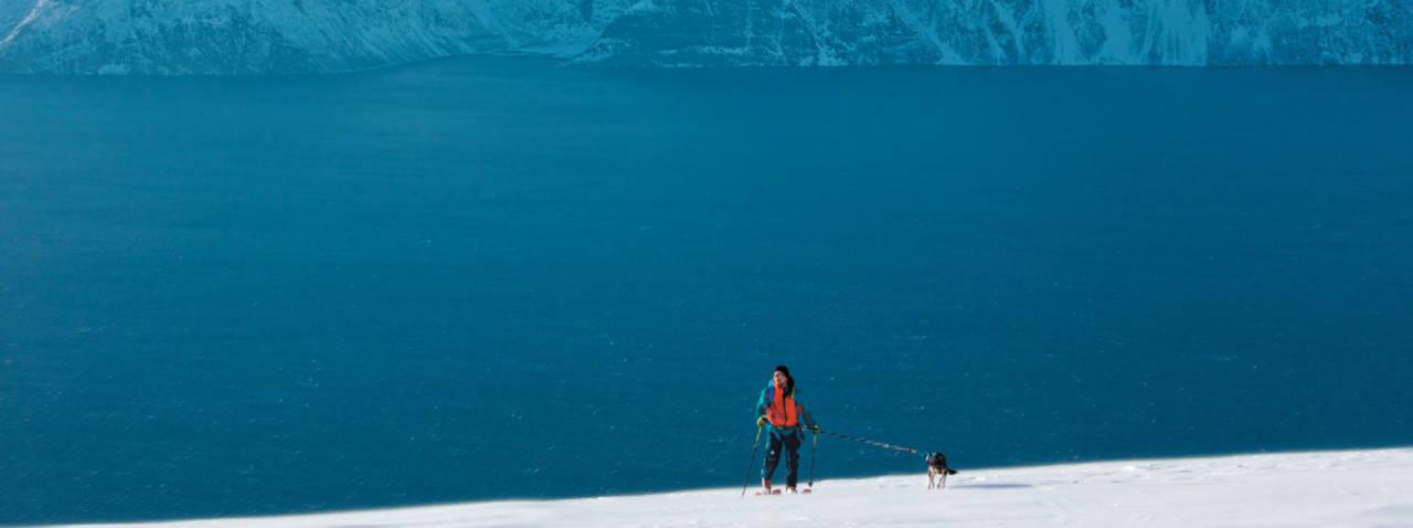 Hans Andersen og huskyen Svea nyter fjell og hav på vei opp mot Sorbmegaisa. Foto: Eimund Bakke. / Toppturer i Troms.