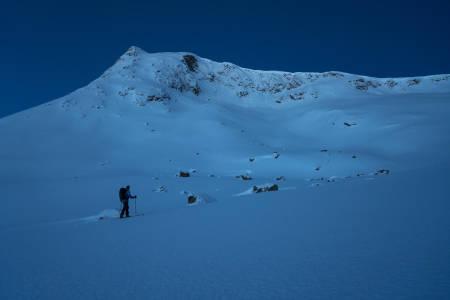 BLUEVELVET:Blånebbakler namnet sitt. Trond Orheim byrjar å vakne etter ein uvanleg tidleg start,og speidar oppover nordryggen.
