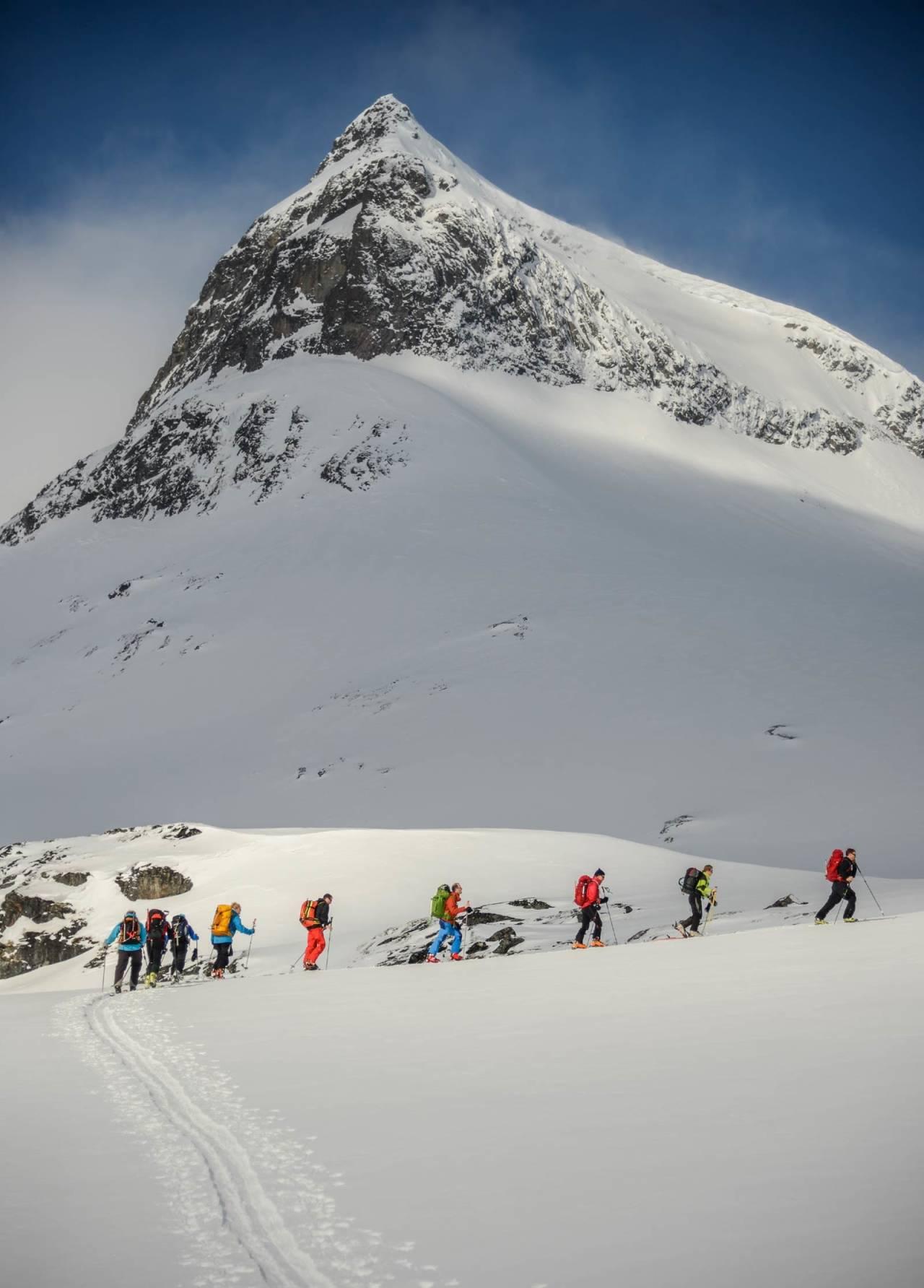 En gruppe på vei opp mot Storebjørn. Foto: Hallgrim Rogn / Høgruta i Jotunheimen.