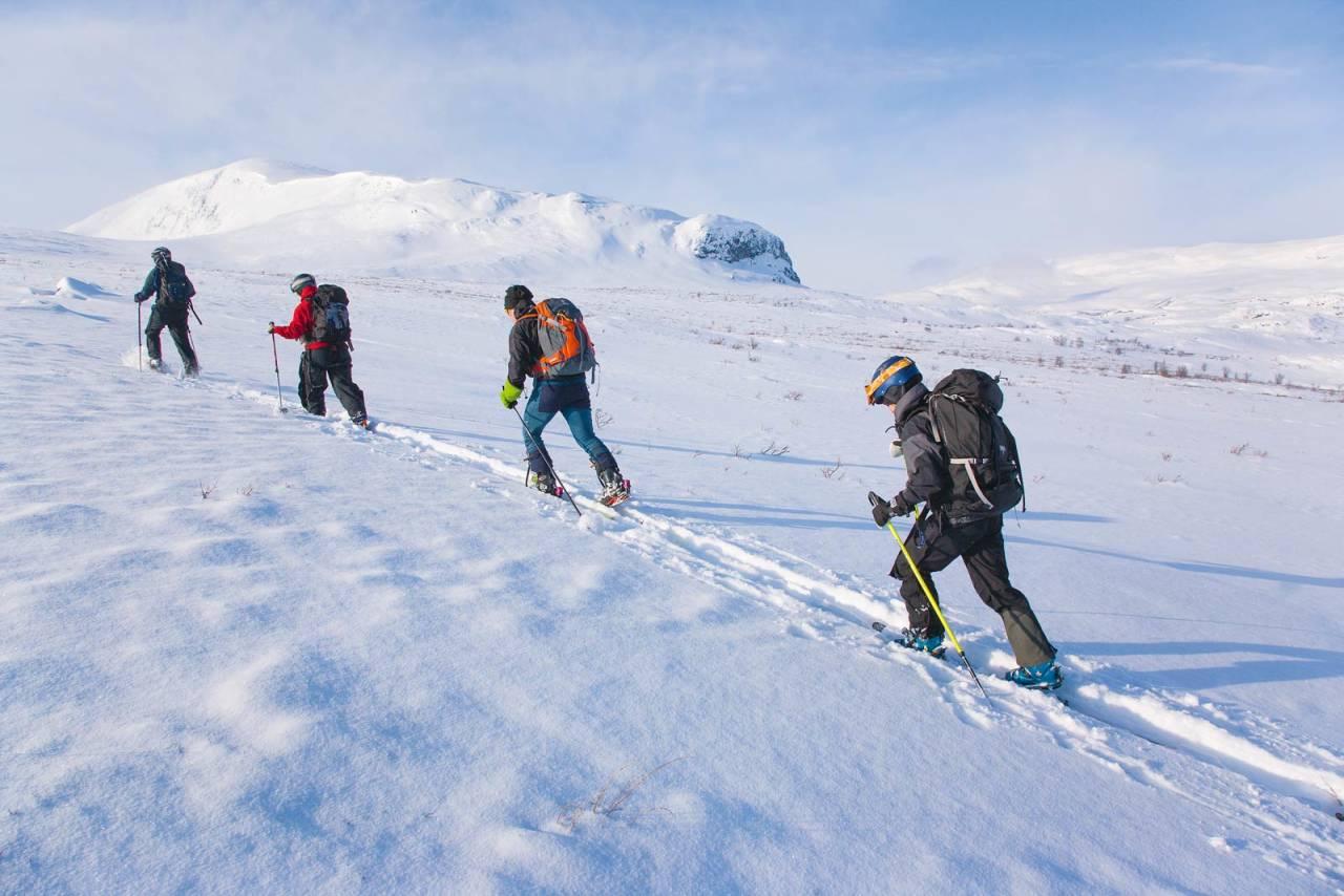 På tur opp fra Tältlägret mot Abiskoalpene. Girons lange rygg vises i bakgrunnen. Foto: Peter Rosén / Toppturer rundt Narvik.