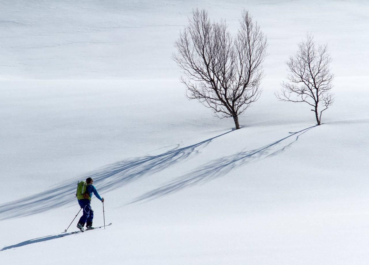 Lars-Åke Krantz på tur i ferd med å forlate den glisne skogen. Foto: Robin Anderson / Toppturer rundt Narvik.