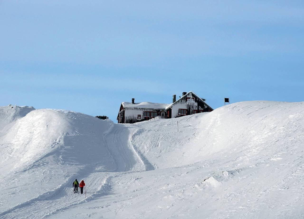 Ettersom normalveien fra Björkliden kjøres daglig med beltevogn, finnes det som regel ett tråkket spor å følge. Foto: Lars Thulin / Toppturer rundt Narvik.