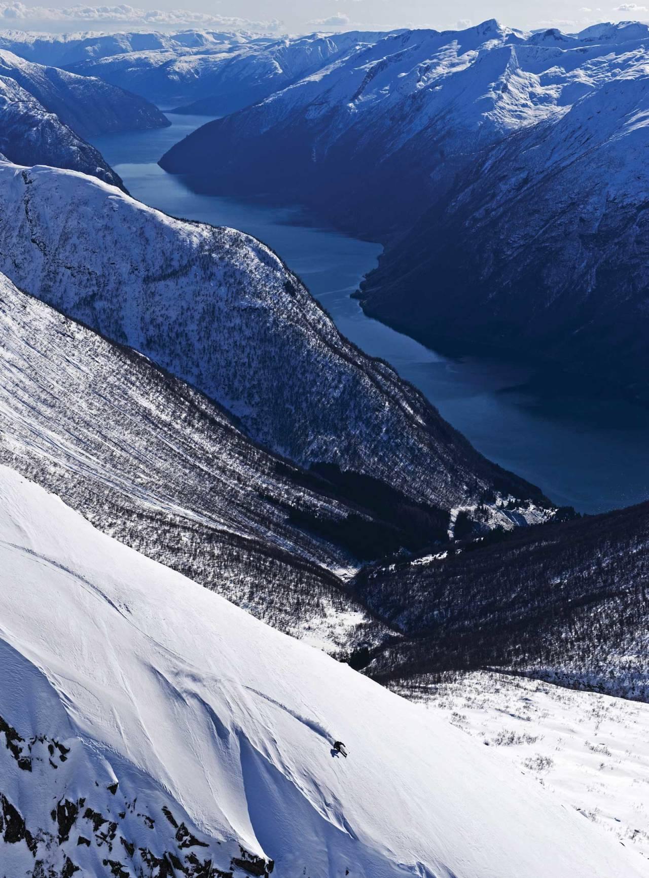Nordvestryggen på Nyastølseggi. Skogen på Kløvingahaugen mot fjorden. Foto: Mattias Fredriksson