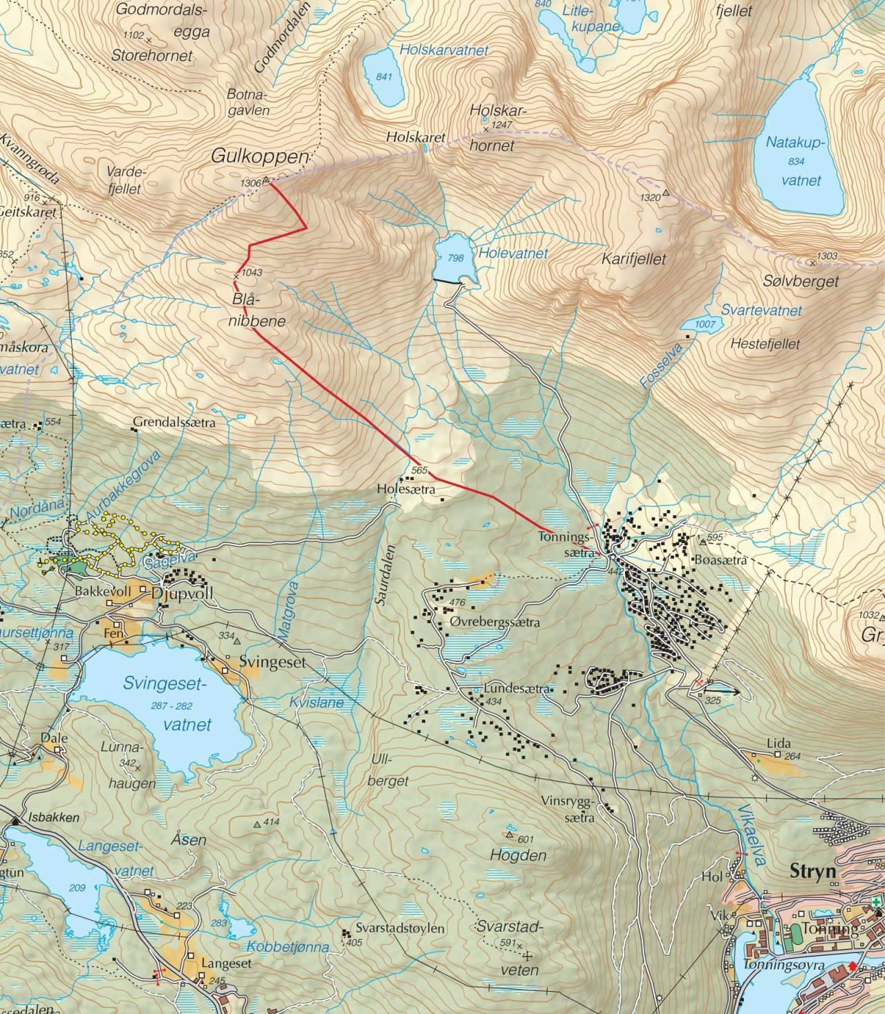 Kart over Gulkoppen med inntegnet rute. Fra Trygge toppturer.