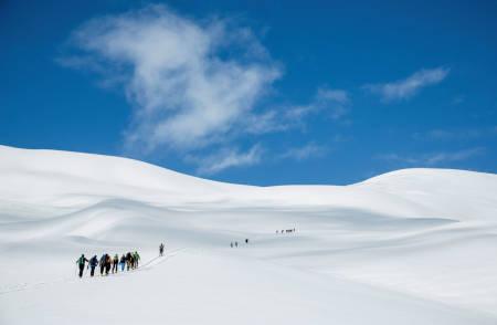 Ei lang rekkje skiløparar på veg opp dei «snille» bakkane mot Urbakken og vidare opp mot Blæja. Foto: Håvard Myklebust.