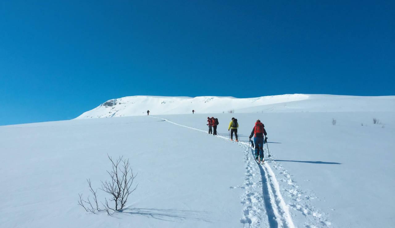 Vakker dag og mye folk på vei mot Stormheimfjellet i herlig snø. Foto: Ann Kristin Gjelsten