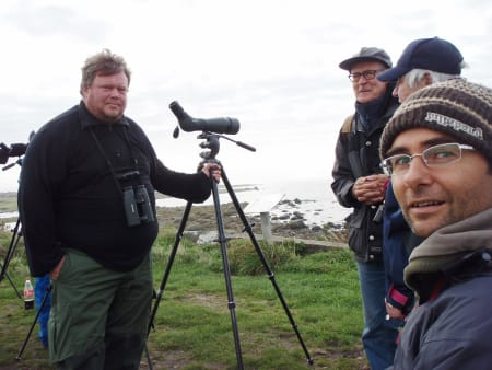 SAMLING: Flere hundre fugletittere samlet seg på Lista for å få med seg rødbrystspurven på svipptur fra Det kaspiske hav. Bilde: Terje Tuft