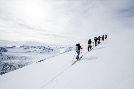 Våre guider på Fri Flyt Tur har sertifisert kompetanse. Foto: Hans Kristian Krogh Hanssen