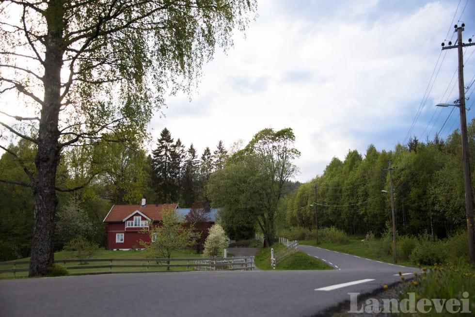 IDYLL: Vil du ha hus på landet men bo nærme byen? Sjekk ut veien til Vestmarkssetra.