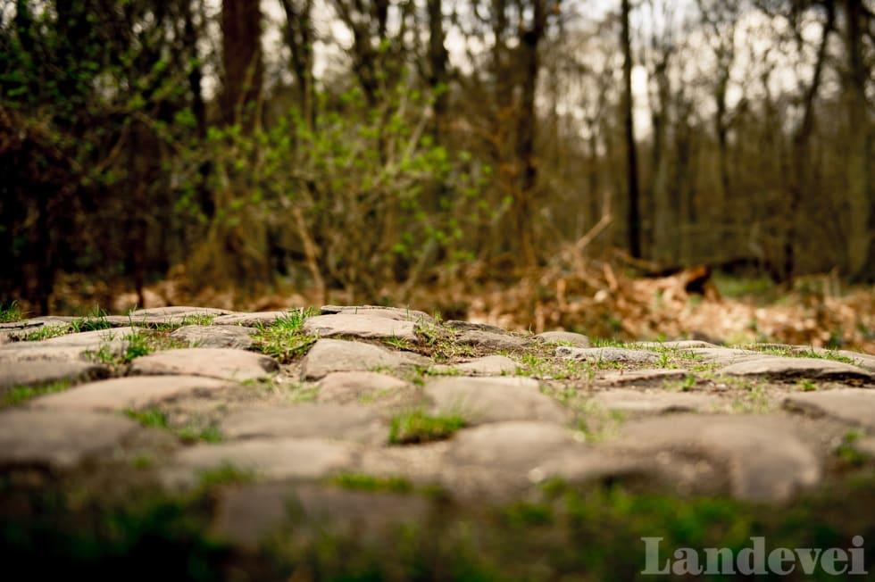 KOKKO: Dette er noe av den første brosteinen som møter deg i Paris-Roubaix Challenge.
