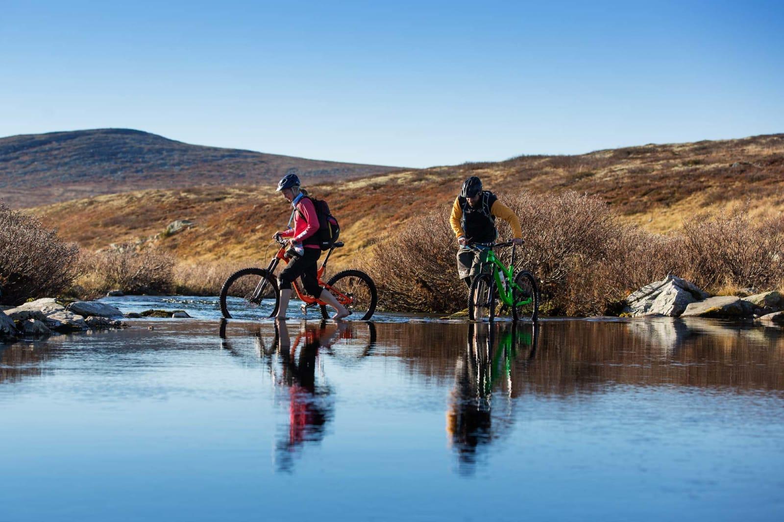 KALDT: Høstfargene i fjellet hinter, og ja, vannet var kaldt. Foto: Kristoffer H. Kippernes