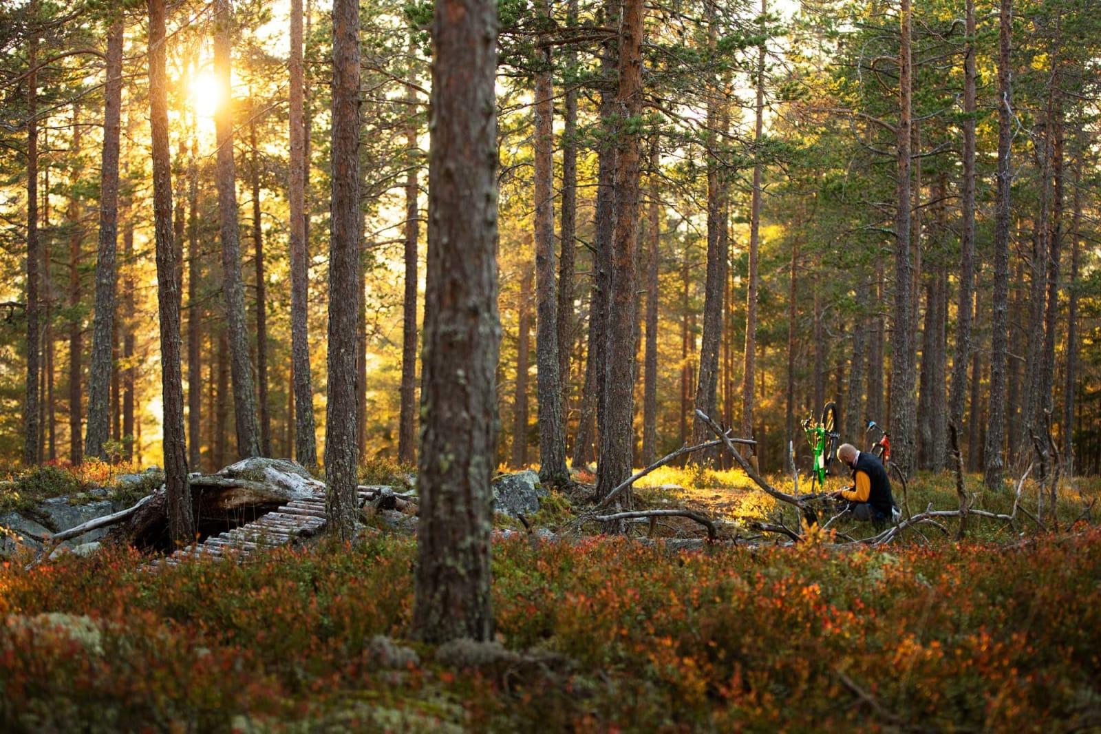 DING: Kjell Arne Høyesveen fikser en punktering han selv forespeilte turfølget. Foto: Kristoffer H. Kippernes.