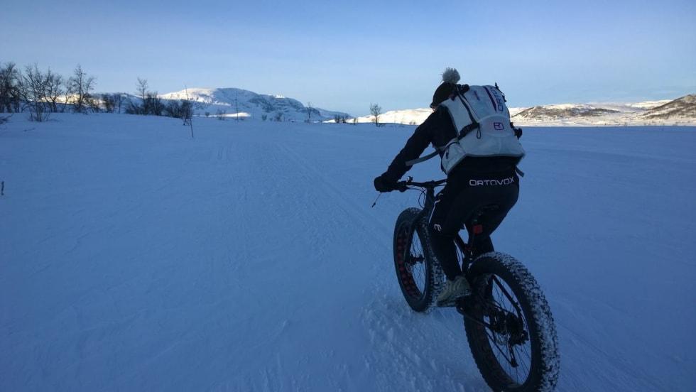 Fat Viking Challenge 2 - Foto Nina Gässler 1400x788