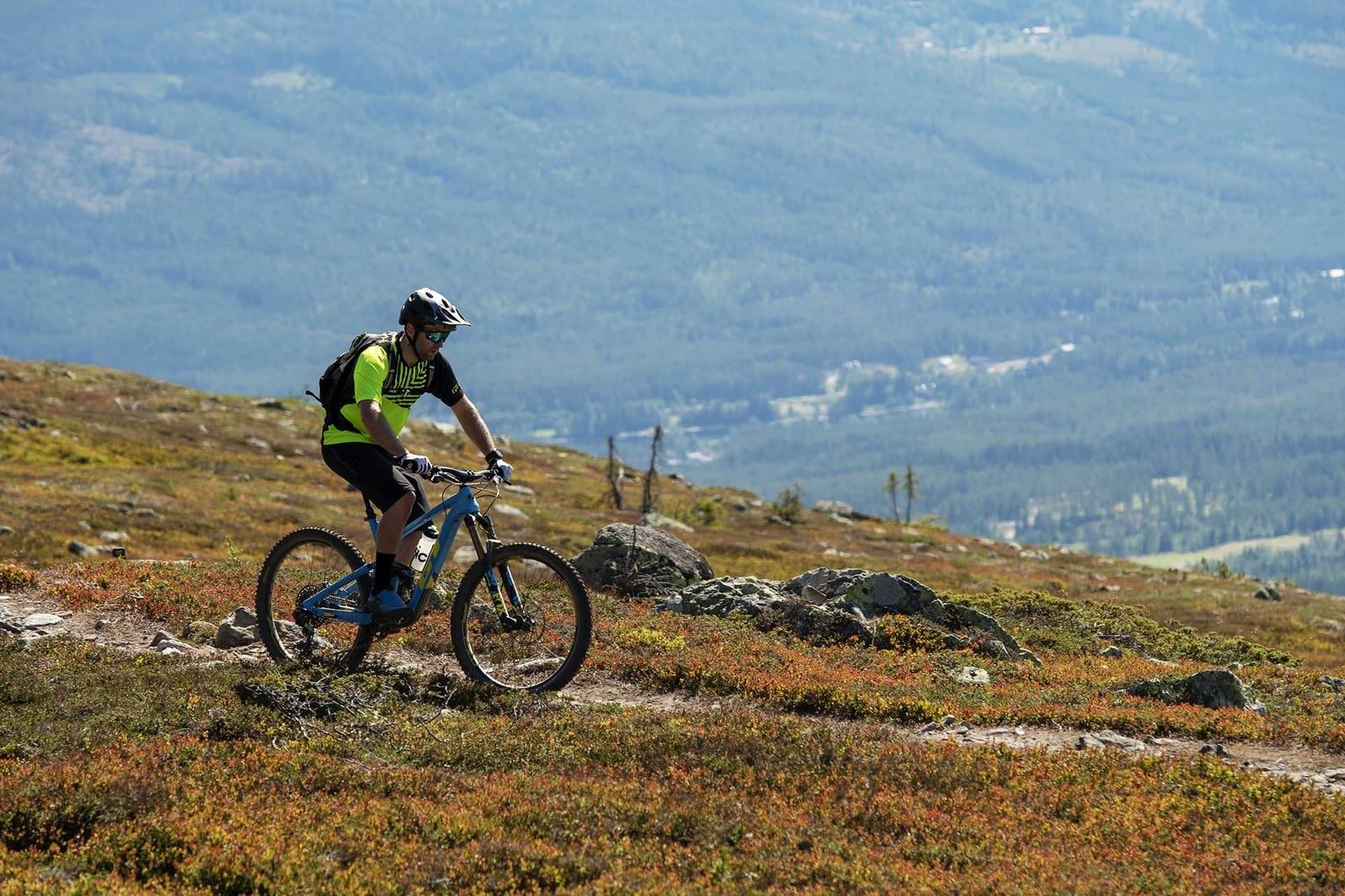 OPP I HØYDEN: Du kommer deg opp i fjellet enten med heis eller for egen maskin, og kan nyte fine stier over Trysil. Foto: GT.