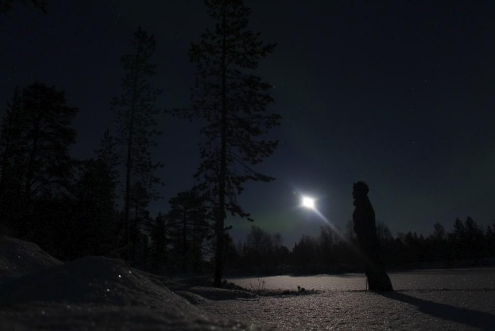 Månen bærer lyset gjennom møretida i nord. Stundom lyses hele skogen opp av fullmånen.