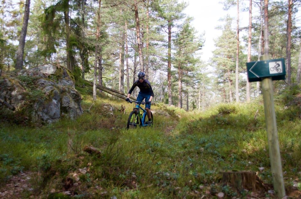 K Sandaker - Jon Petter Sandaker 1400x924