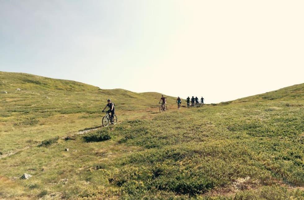 Øyer fjellet - Ole Wattne 1400x924
