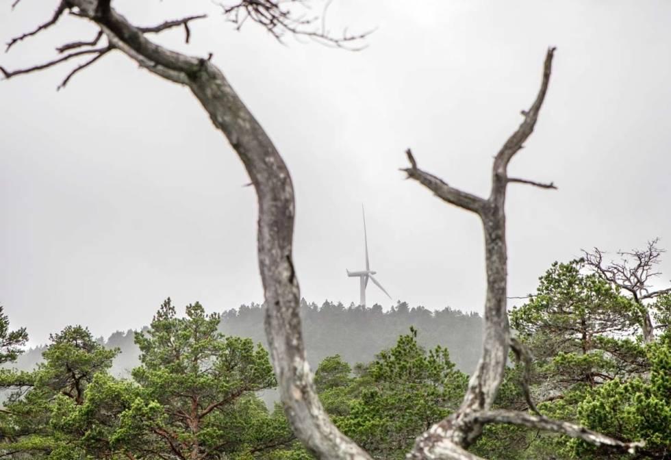 For-mye-verdifull-natur-i-Troendelag-har-blitt-bygd-ut-crop1280