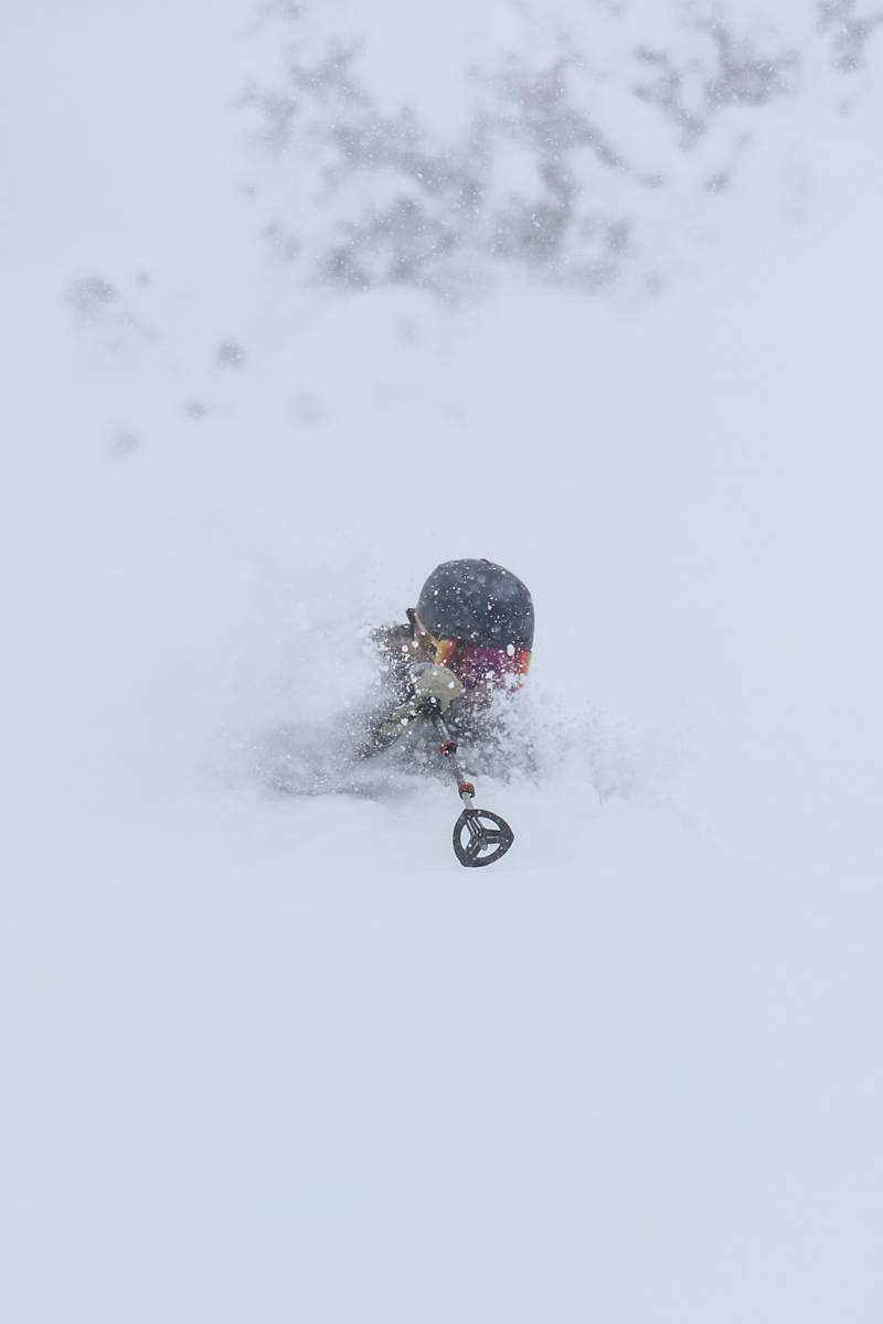 Bunnløs pudder i Utah. Foto: Libby Ellis