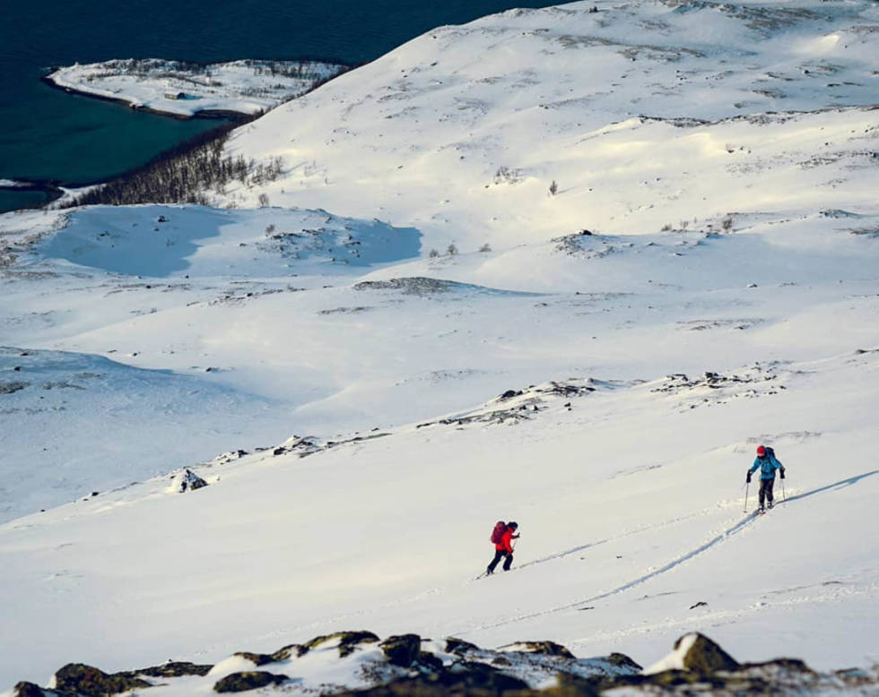 Neverfjord