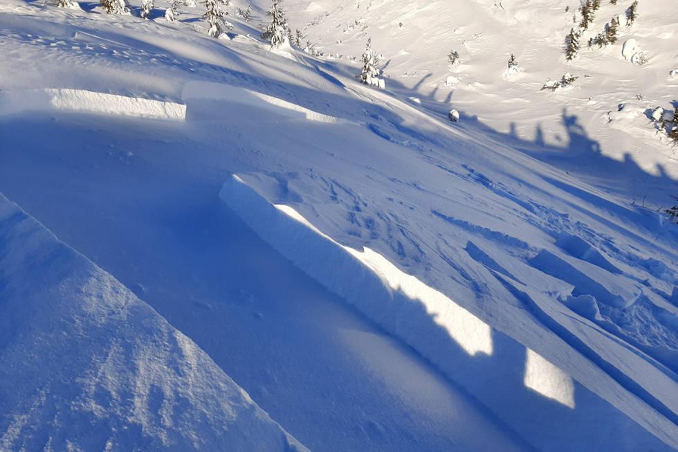 Snøskred Høgevarde