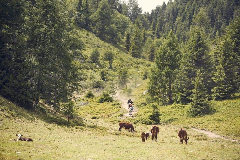 Ingen klaget på utsikten under første etappe av TransAlp, som gikk fra Tux til Brixen. 105 kilometer. Foto: Arrangøren
